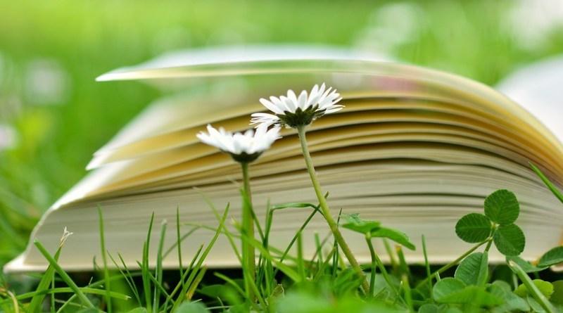 siembra libros