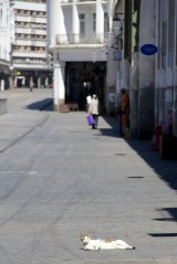 Casablanca - as we mentioned last week the streets were empty during the day