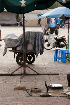 Marrakech snake charmers (we didn't get any closer!)