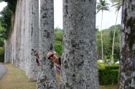 Cheesy photo at the Kandy Botanical Gardens!