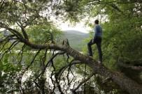 Ben at Loch Eilein