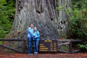 The 'Big Tree' at Prairie Creek Redwoods State Park in Oregon