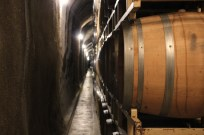 Rutherford Hill winery cave tour in the Napa Valley, California