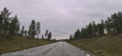 On the road somewhere northern Sweden