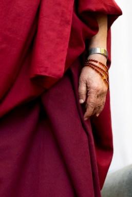 Dalai Lama, photo, Tim Steadman