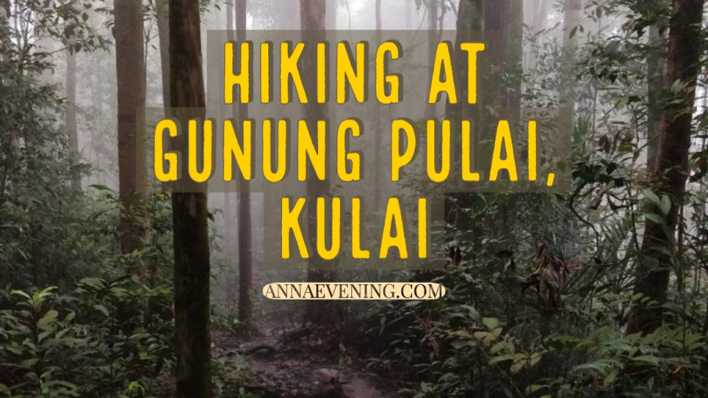 to show Hiking at Gunung Pulai, Kulai (Forest track)