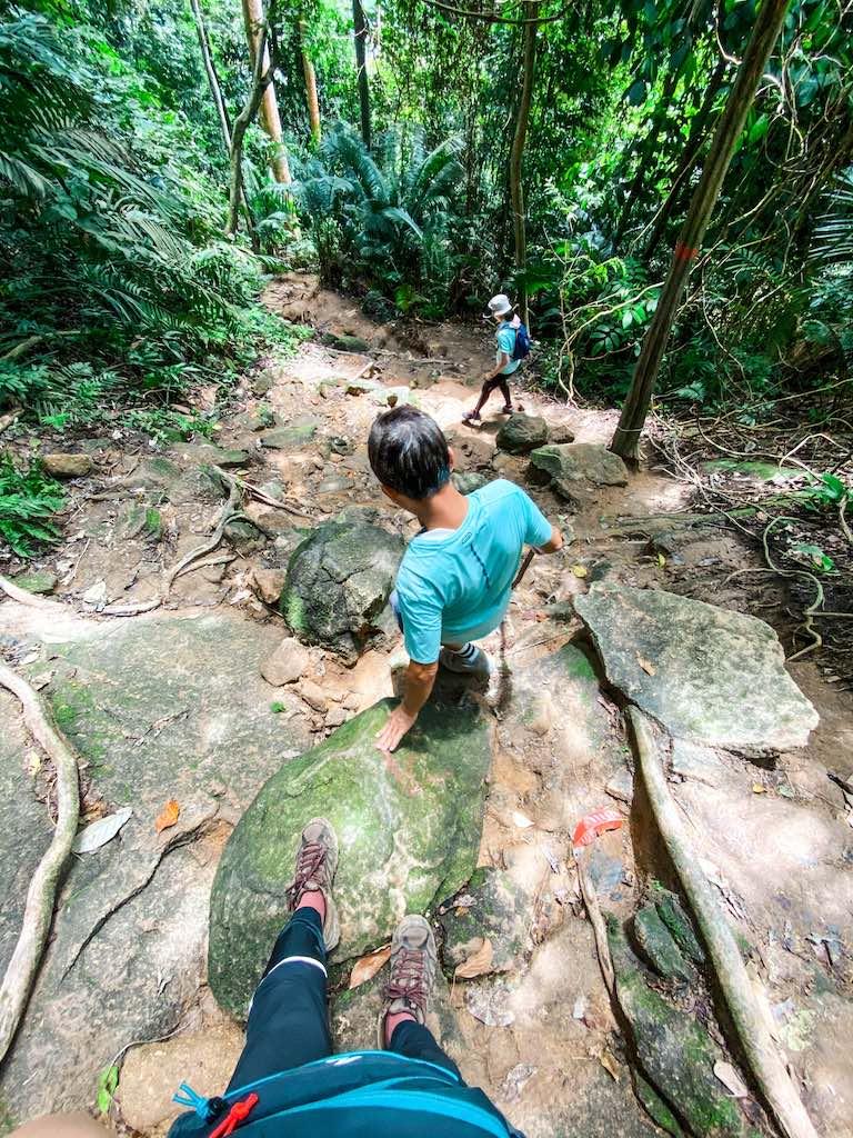 a blue shirt man hiking down Gunung Datuk forest trail