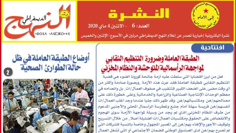العدد 6 من النشرة الإلكترونية الإخبارية
