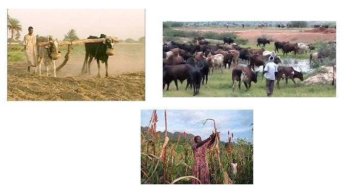 الإصلاح الزراعي الانتقالي في السودان في ضوء برنامج الشيوعي السوداني