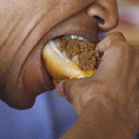 Obama spiser 4