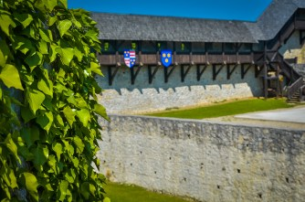 Inner Courtyard of Old Castle of Celje with Flags