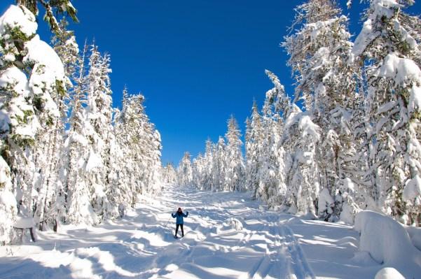 Snowshoeing on Mt. Hood