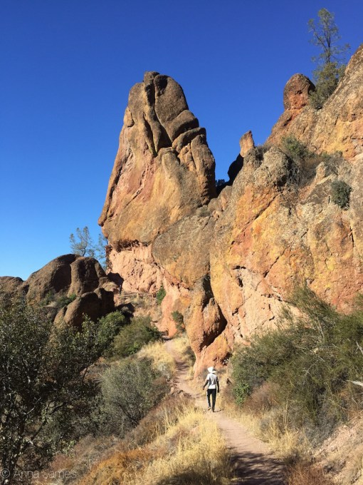 Juniper canyon trail