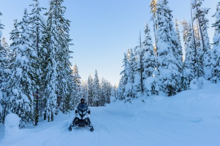 Snowmobiling in Targhee national forest