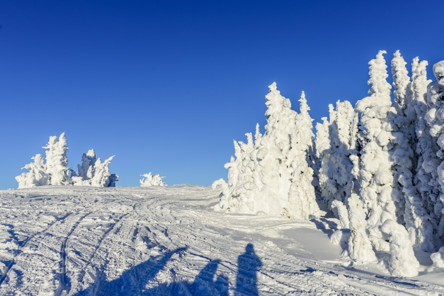 Snow ghosts of Two top mountain