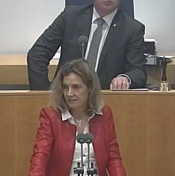 """22.3.2018: Zum Antrag der AfD zum Thema """"Stabilitätsfonds"""""""