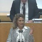"""31.01.2019, Rede zum Antrag der CDU: """"Vollständige Abschaffung des Solidaritätszuschlags"""""""