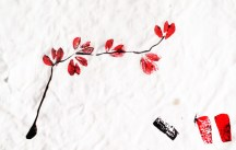 Japanese inspired- drawing : Ikebana Spring Branch in red and black ink