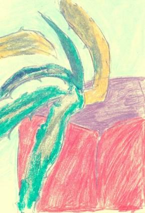 Aloe_vera_illustration