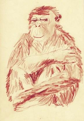 pencil hand-drawn illustration