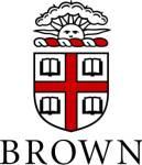 Brown small seal