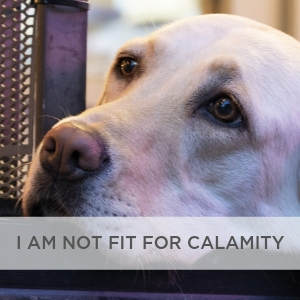 I Am Not Fit For Calamity