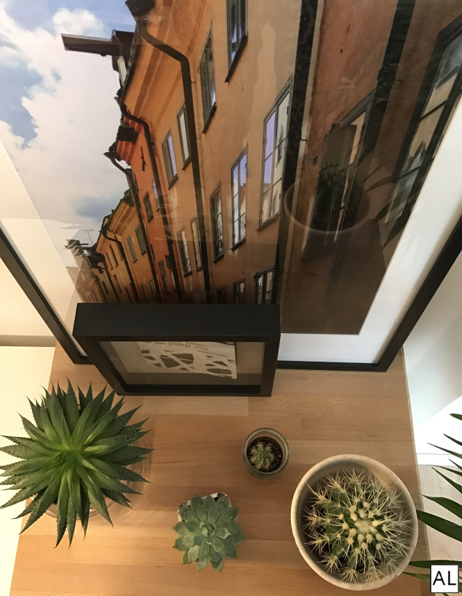 Interior Wohnungstrend Urban Jungle
