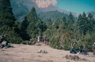 Maoists hiding in Rukum forest while returning from the Beni front.