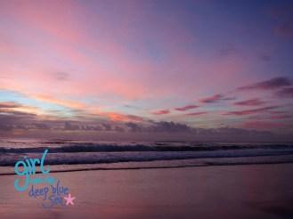 Pink Burleigh Dawn