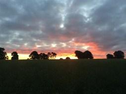 Surrey Hills sunrise