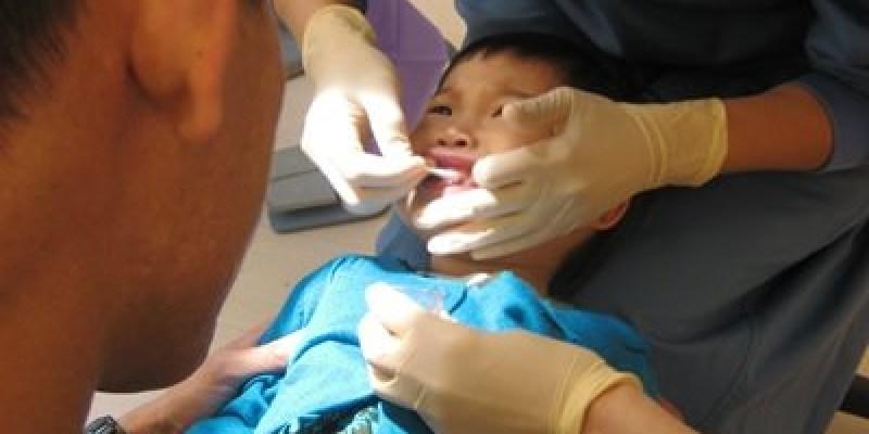 ﹝1Y8M1W5D﹞胡桃鉗牙醫。第二次報到