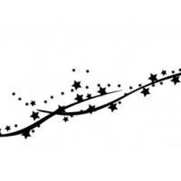 Mon étoile contraire