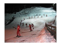 2625910-nightshow_of_the_ski_school_ischgl-ischgl
