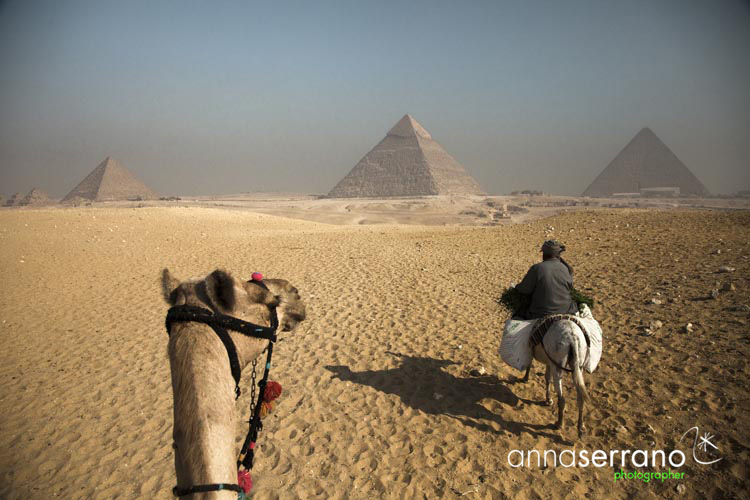 Africa, Middle East, Egypt, Cairo, al-Qahira, Giza, Pyramids, desert