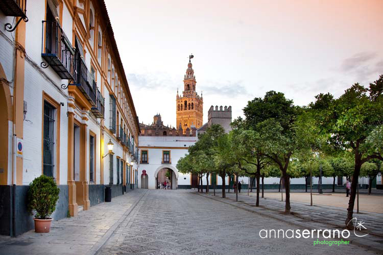 Spain, Andalusia, Sevilla, The Giralda from Patio de Banderas