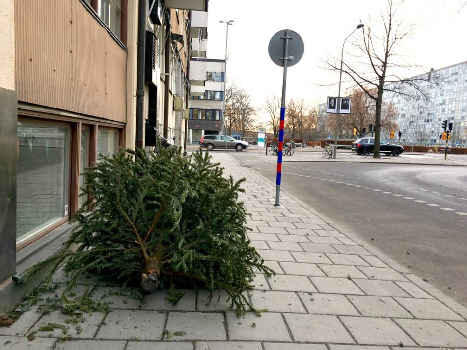 återvinna din julgran