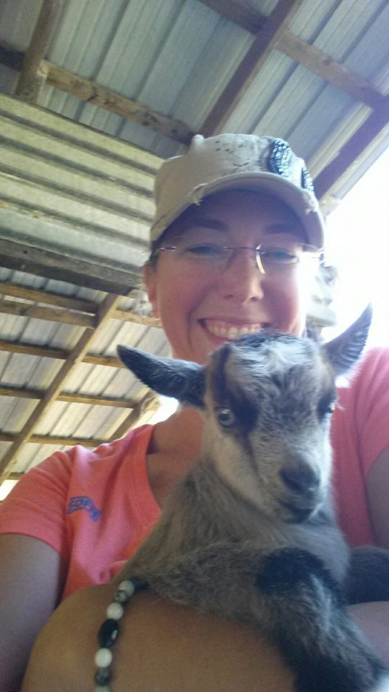Baby goat at 2 days