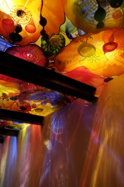 chihuly8