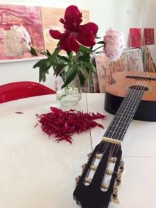 IMG_7045 gitarre