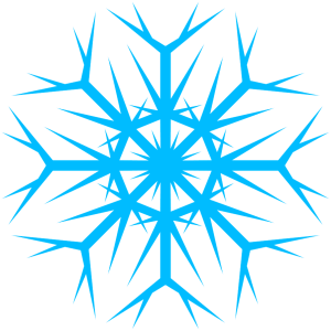 Snowflake copo nieve frozen