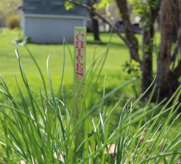 Ann Butler Designs - Walnut Hollow Blog Hop - Garden Stakes 007