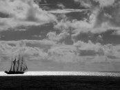 Star Clipper raises sail Black and white image