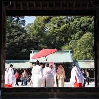 The Japanese Wedding...Meiji Jingu, Tokyo