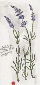 Lavender watercolor by Anne Burgevin
