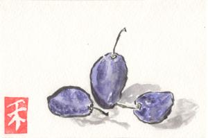 Purple Plums watercolor by Anne Burgevin