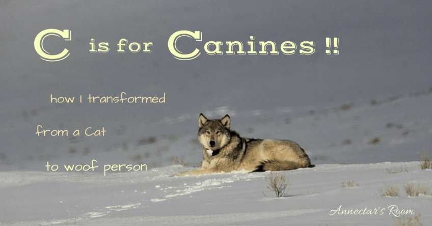 C is for Canines