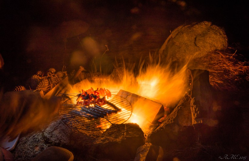#feu #grillades #nuit