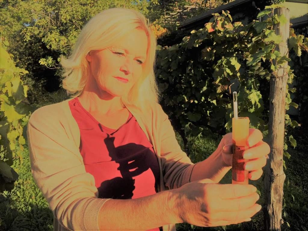 Med et hydrometer, også kalt mostimeter, kan vi måle sukker og alkohol i vin, eller mosten fra druer som gjærer. Det er et viktig instrument i vinproduksjonen.