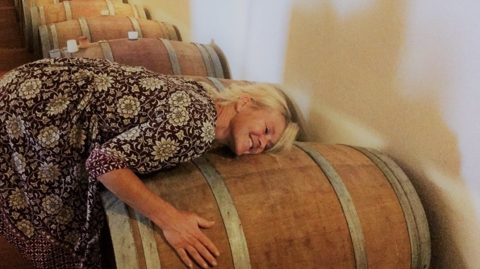 Finnes det gode rødviner til under 130 kroner? Det er et spørsmål jeg har fått mange ganger. Svarer er ja. Noen billige viner klarer fylle kriterier som gjør at jeg kan karakterisere vinen som god. Ikke som én vin som tar meg til de store høydene, men som fint kan gi litt hverdagsglede. Her er noen av dem.