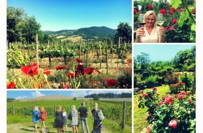 Bli med på et vinkurs i Italia? Kun damer, vingårder, en katedral, et bad eller to, smake mange ulike viner og mat, blomsterenger, sol, latter og gode samtaler. Bli en bedre vinsmaker og få mer kunnskap om vin blant vinranker og i vinkjellere – på den årstiden der sola varmer og naturen byr på aromaer som finnes i vin.